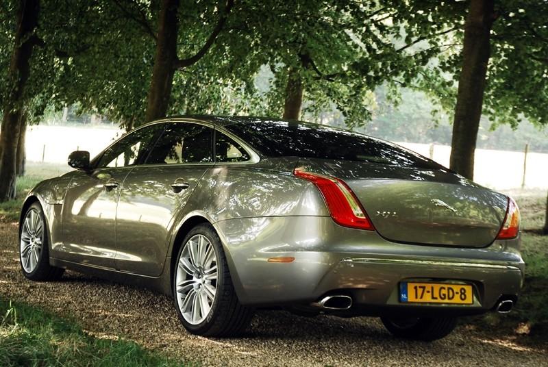 nisocutttu  Jaguar 36